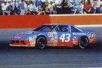 NAS007 Richard Petty - Vintage NASCAR